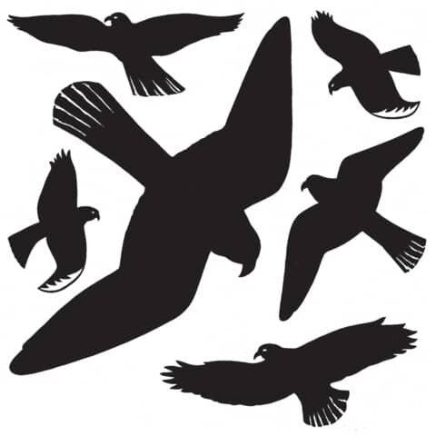 Herma 5999 Fensterbilder Warnvögel 30x30 cm