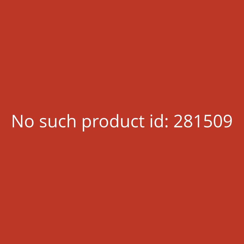 Thomas Drachen 'Sturmvogel' - 53 x 80 cm, PE-Folie