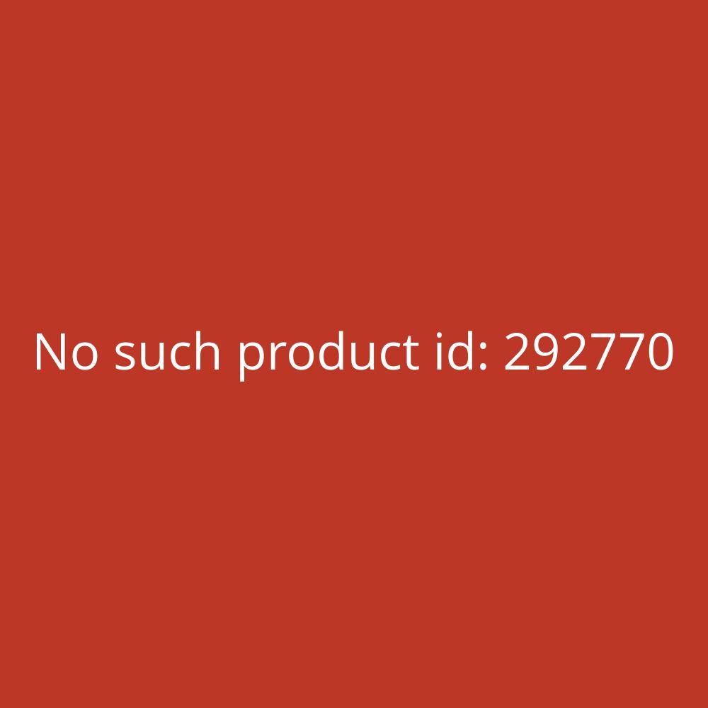 Folex OHP-Kopier- und Druckerfolien Standard Universal X-10.0 - A4, 0,10 mm, 100 Folien