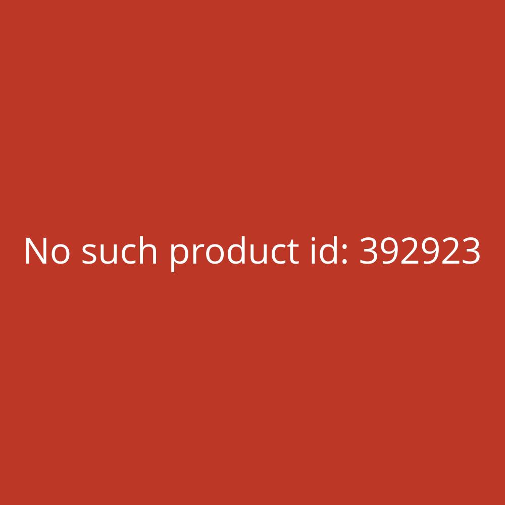 Sharp Schulrechner EL-510RT